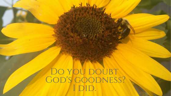 Do you doubt God's goodness blog graphic